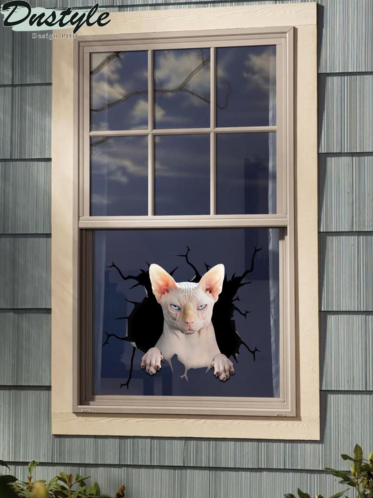 Sphynx cat crack window decal sticker 2