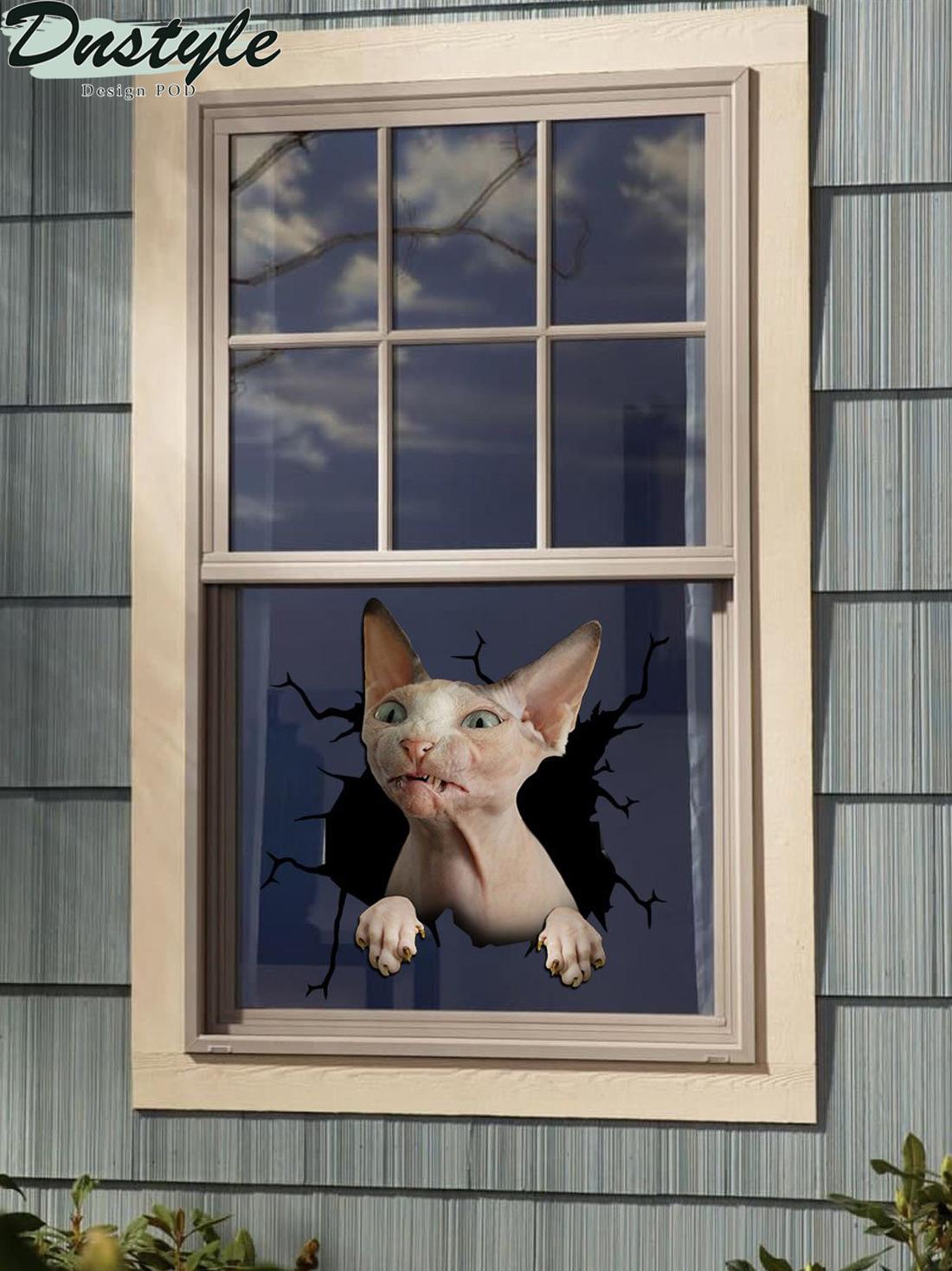 Sphynx cat crack window sticker cats lover 1