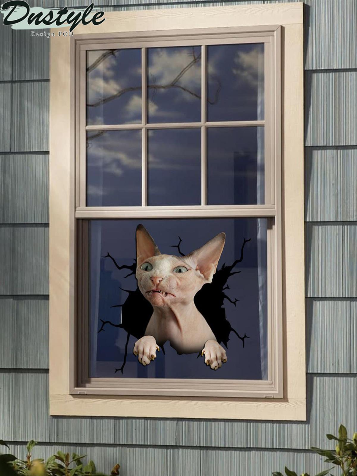 Sphynx cat crack window sticker cats lover 2