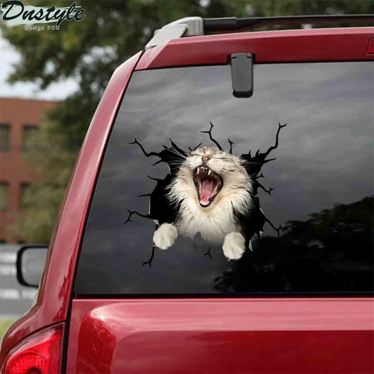 The maine coon yawn crack car sticker cats lover 1