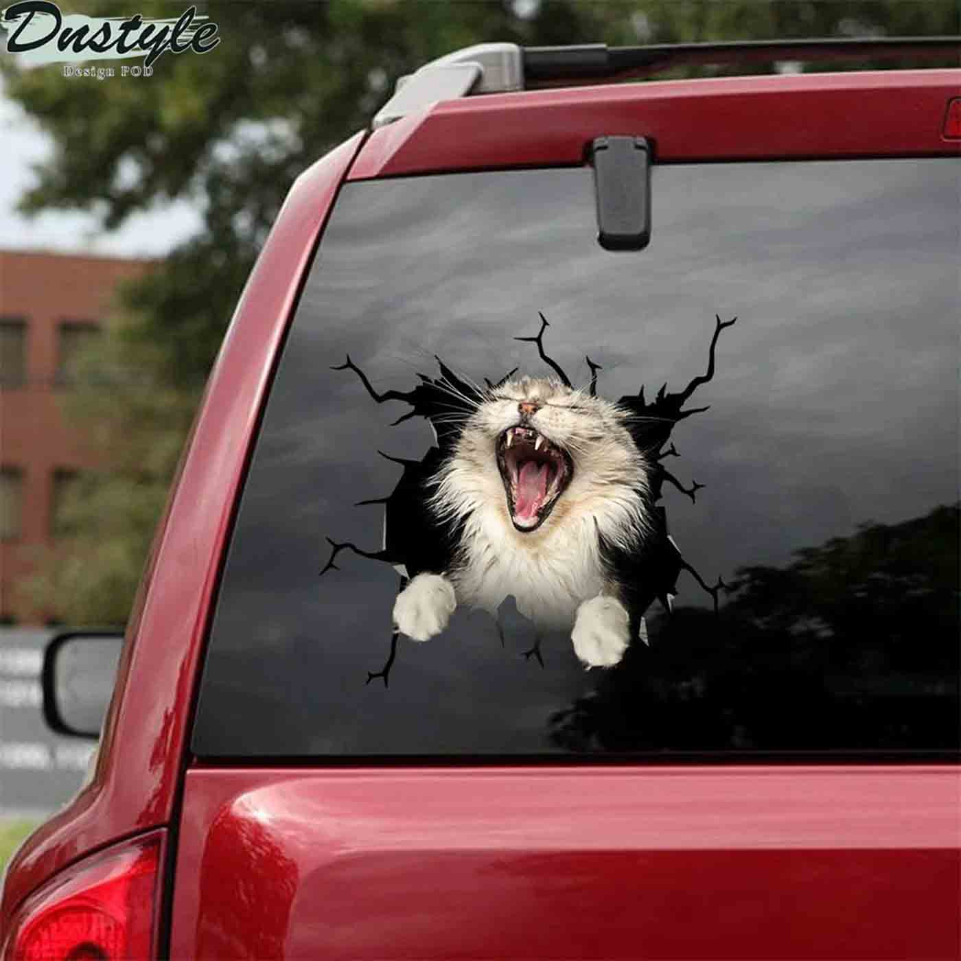 The maine coon yawn crack car sticker cats lover 2