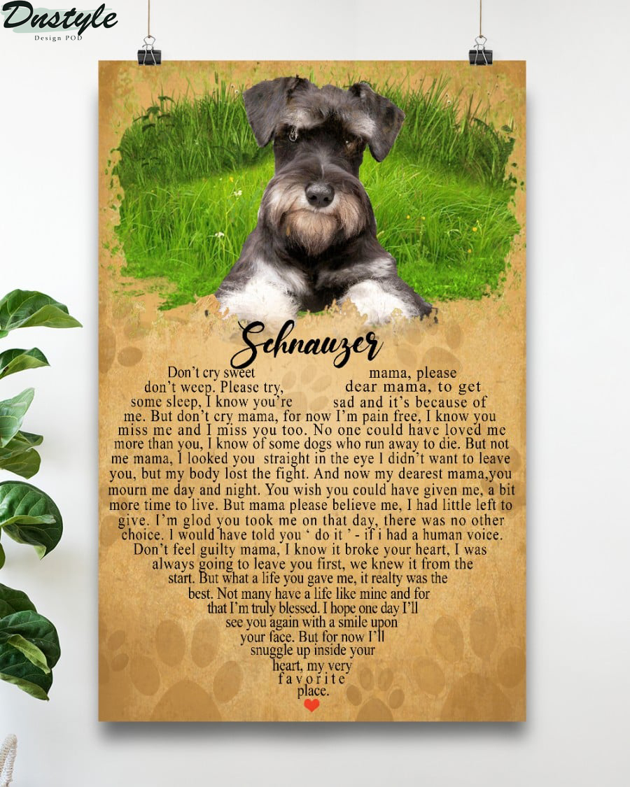 Schnauger don't cry sweet don't weep please try some sleep poster