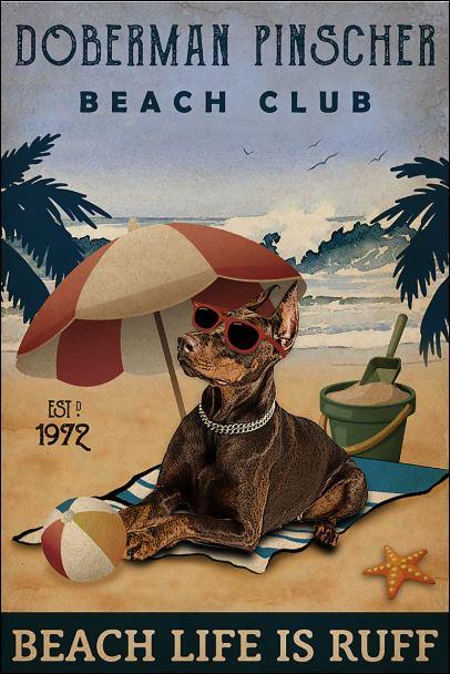 Doberman Pinscher beach club beach life is ruff poster