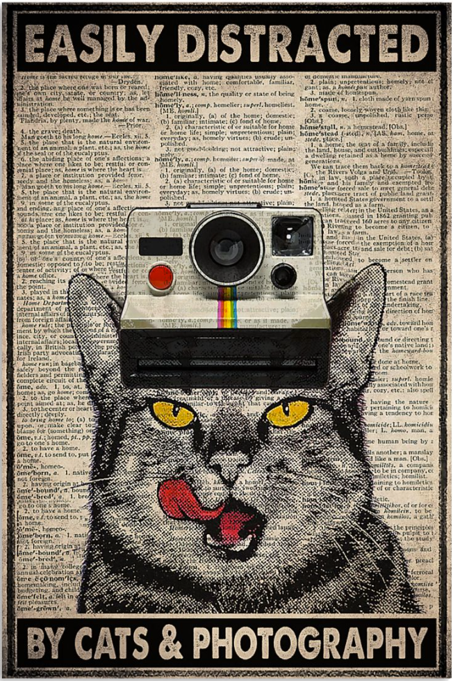 Easily distracted by cats and photography poster