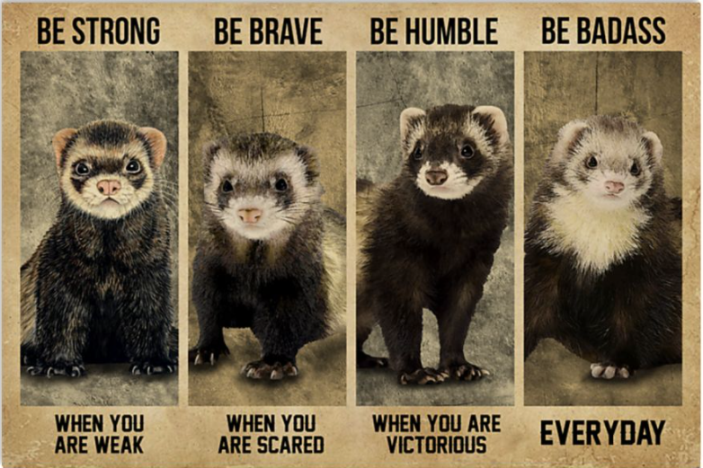 Ferret be strong when you are weak be brave when you are scared poster
