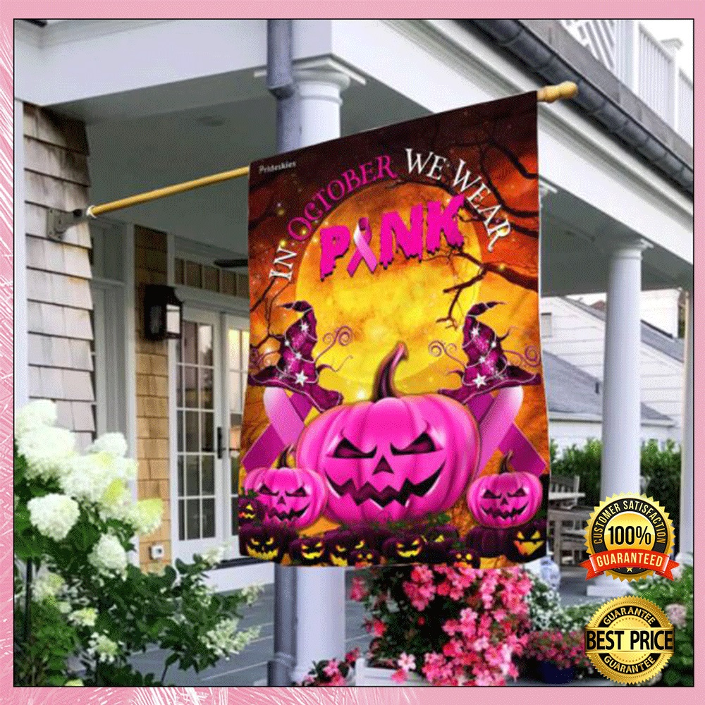 Halloween in october we wear pink flag