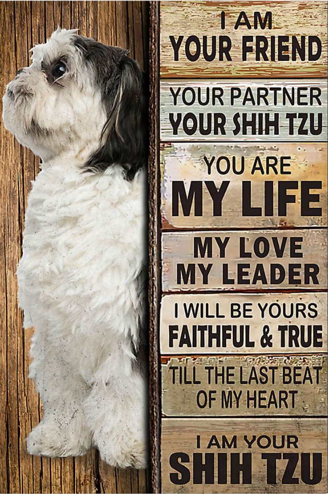 I am your friend i am your Shih Tzu poster