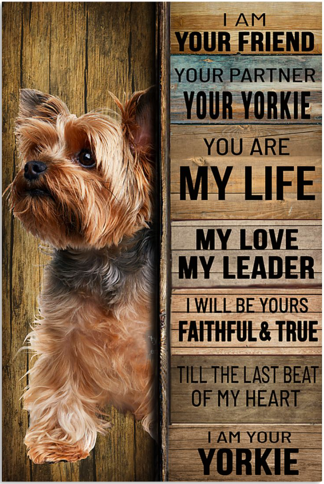 I am your friend your partner your yorkie poster