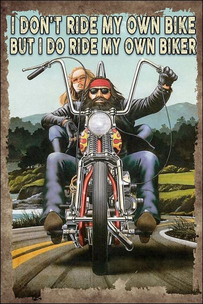 I don't ride my own bike but i do ride my own biker poster