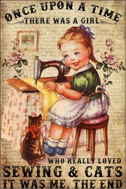 Once upon a time there was a girl who really loved sewing and cats it was me the end poster