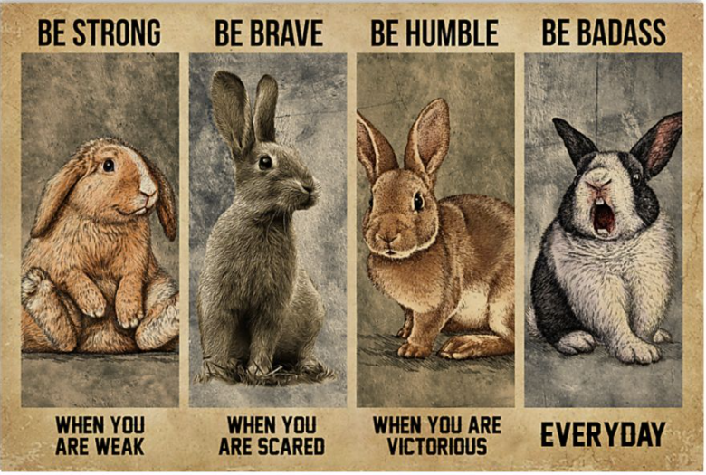 Rabbits be strong when you are weak be brave when you are scared poster