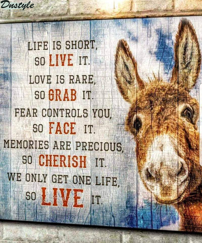 Donkey life is short so live it love is rare so grab it canvas