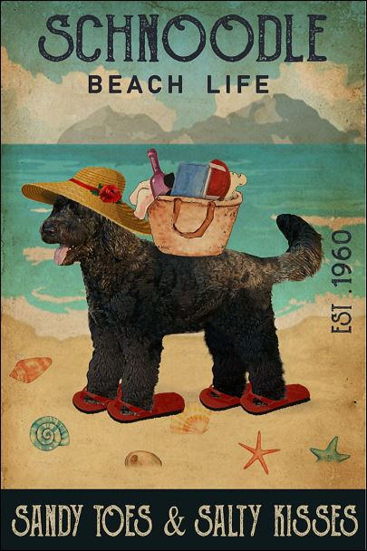 Schnoodle beach life sandy toes and salty kisses poster
